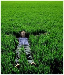 allongé-dans-l-herbe