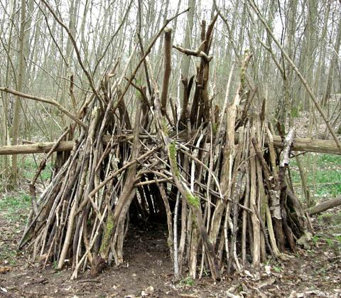 cabane-cahute-arbre