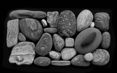 caponigro.stone.voices