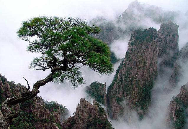 huangshan03nc_1