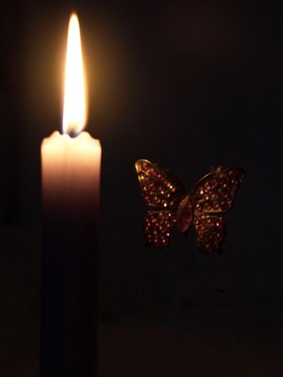 La-flamme-et-le-papillon