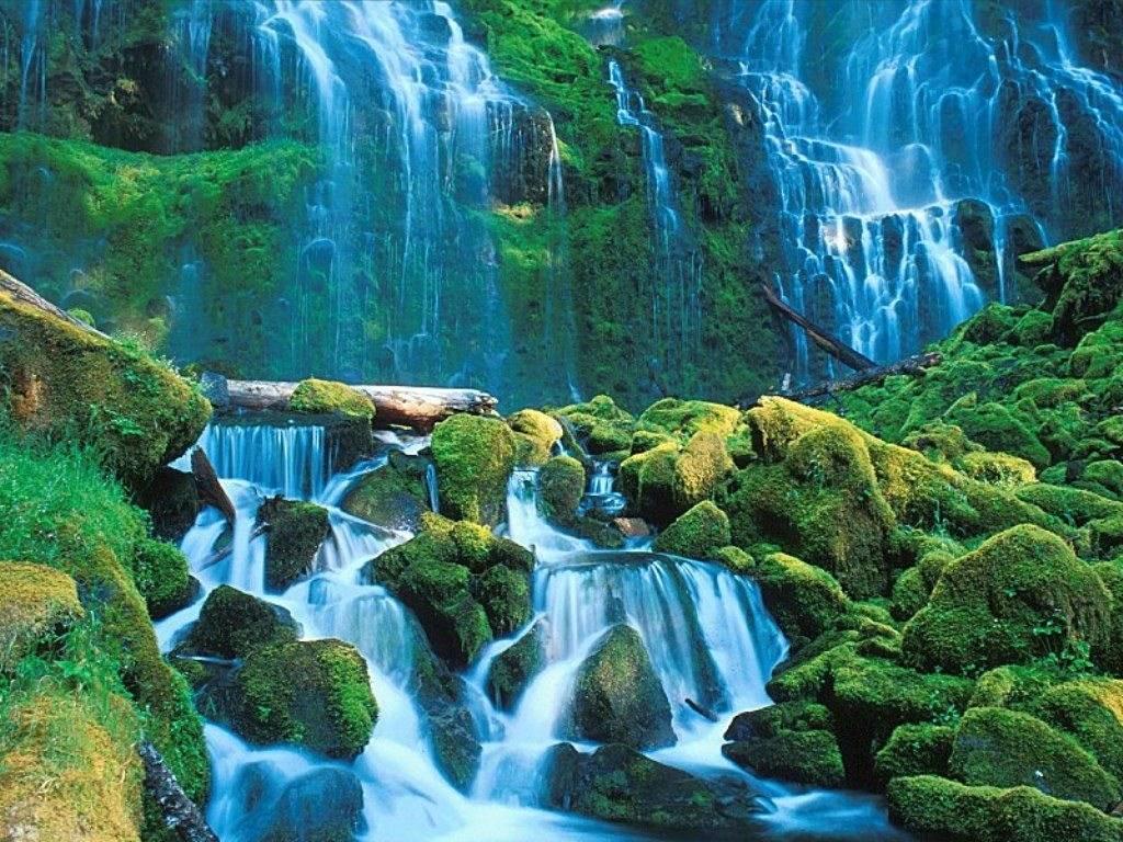 Extrême de l'automne (françois cheng) » cascade