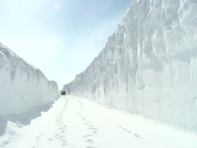 neige canada