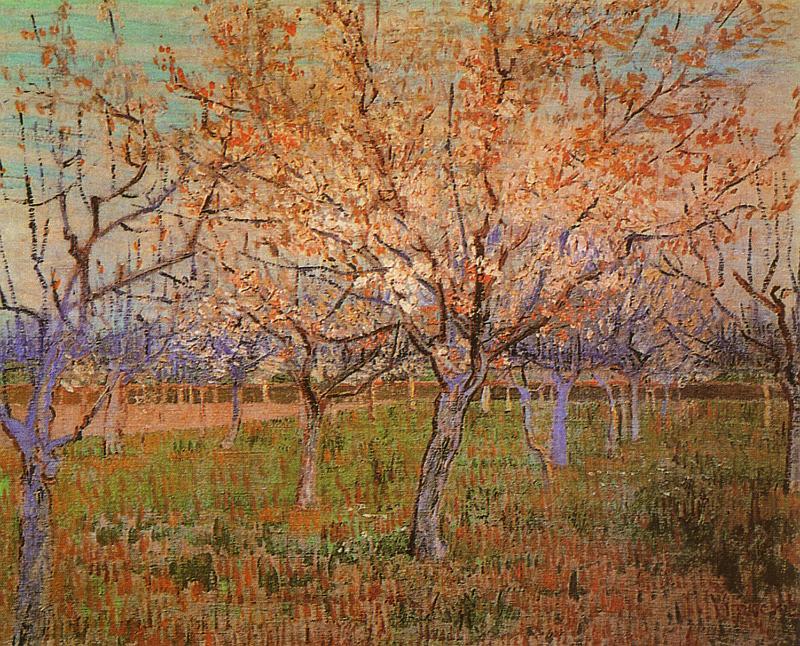 Vincent Van Gogh   Abricotiers en fleurs mars 1888