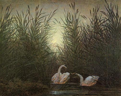 Caspar David Friedrich  cygnes