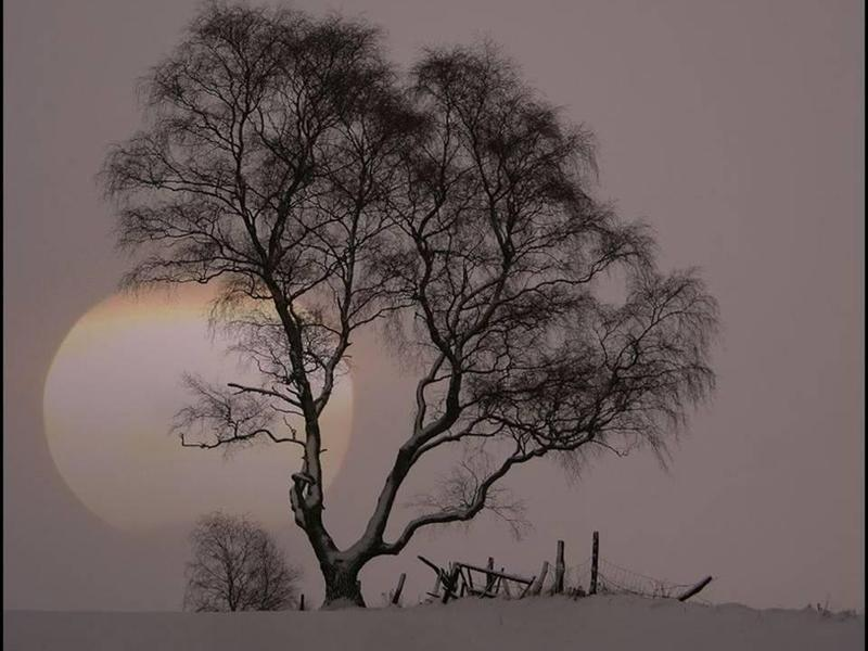 lune-hiver