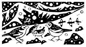 Carry Akroyd  Snow Buntings (February)