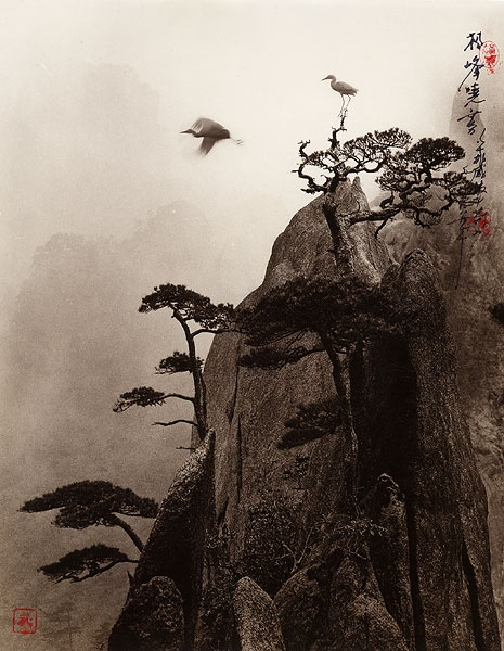 Don Hong-Oai  , Pine Peak