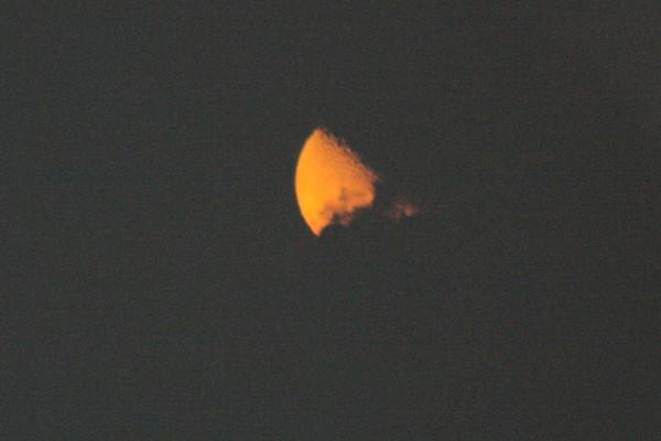 yellow-moon