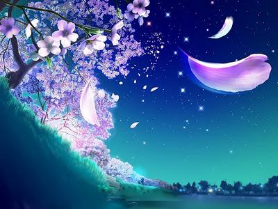 petale_nuit_arbre