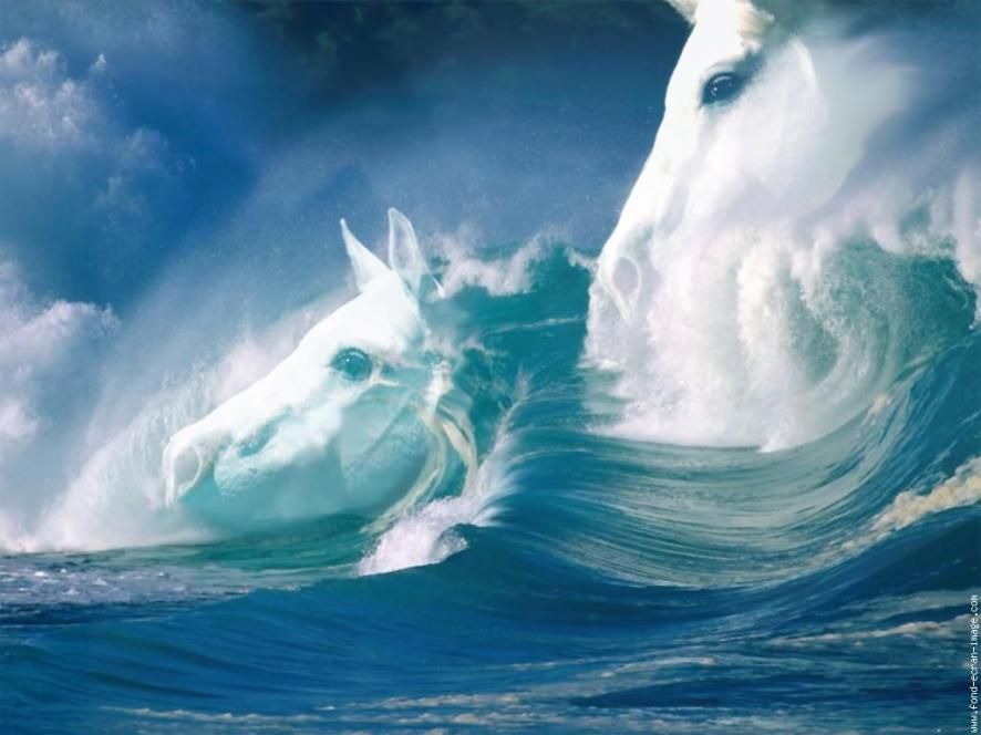 mer-chevaux