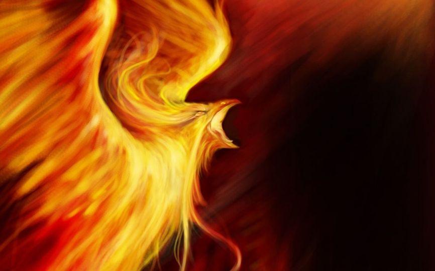 oiseau de feu [1280x768]