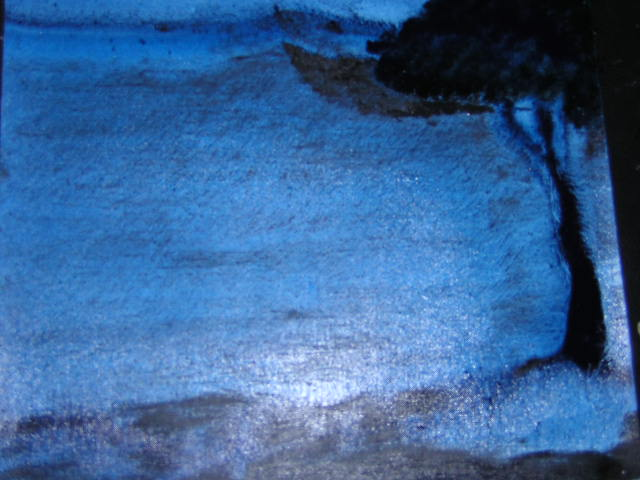 Guillaume Bourquin   Bleu 1 2003
