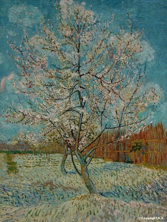 Vincent Van Gogh   Le pêcher rose _3 [1280x768]