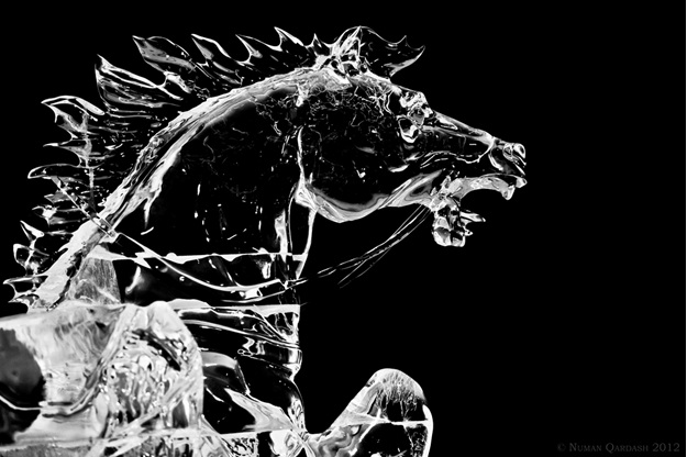 cheval glace