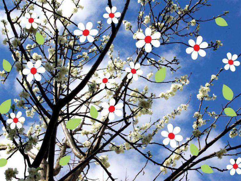 printemps  [1280x768]