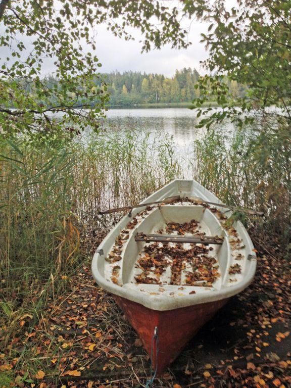 barque feuilles [1280x768]