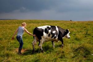 jeune-fille-et-vache