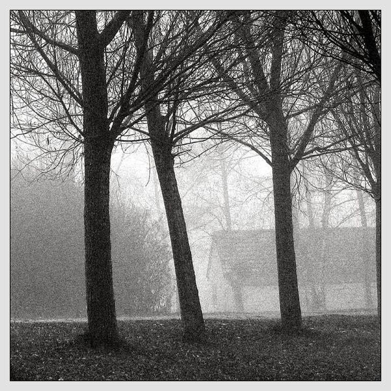 maison-brouillard [1280x768]