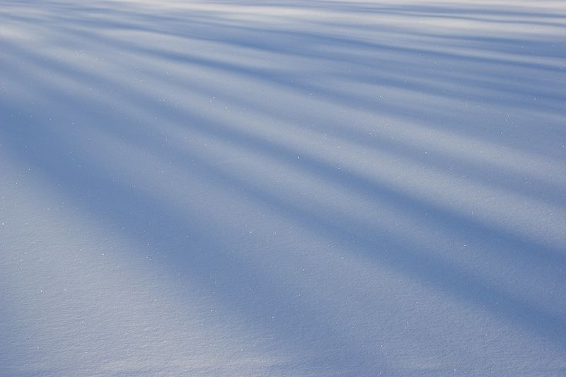 Converging shadows on fresh snow