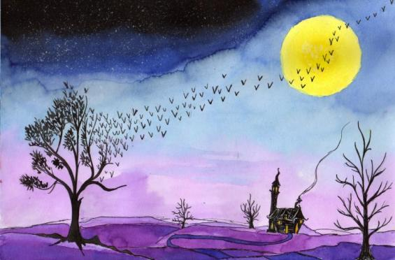 crépuscule violet 0