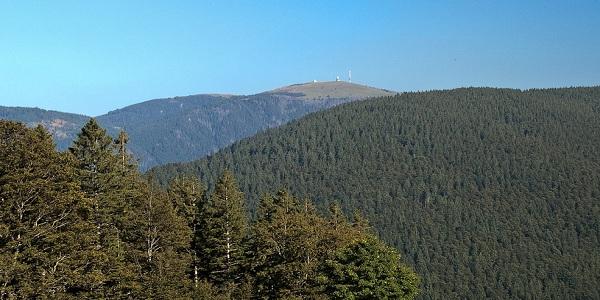 Forêt-Noirejpg