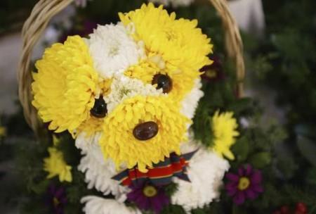 chien-fleur-jaune