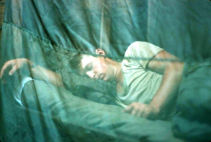 endormi [800x600]
