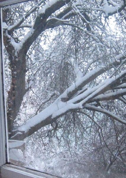 neige fenêtre [800x600]
