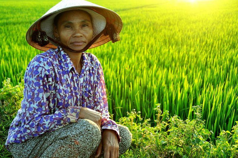 vietnam  [800x600]