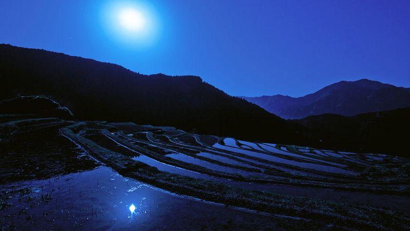 rizière nuit [800x600]