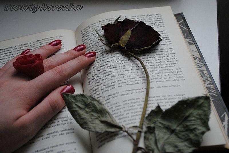 -beatriz-noronha-book-flower-girl-green-228442 [800x600]