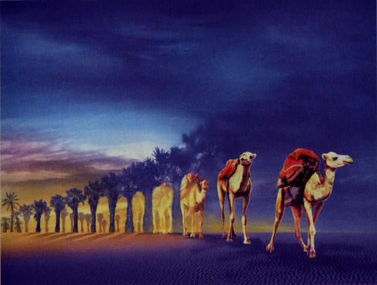 Robert Gonsalves 204e96