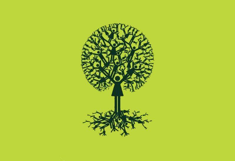 arbre généalogique [800x600]