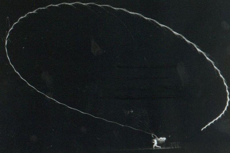 boomerang    [800x600]