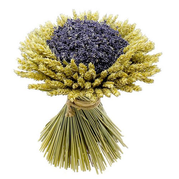 fleurs séchées 004 [800x600]