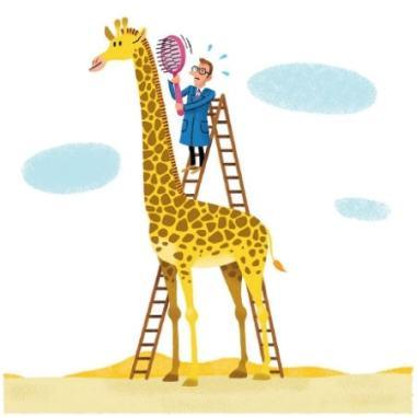 peigner-la-girafe