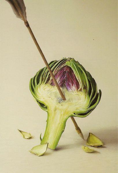 coeur-d-artichaut [800x600]