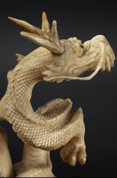 dragon [800x600]