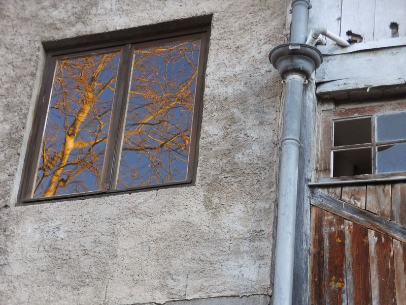 fenetre-automne-42-800x600