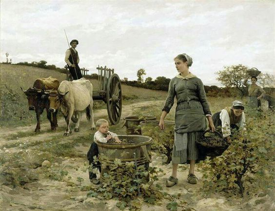 edouard-debat-ponsan-vendanges-04847