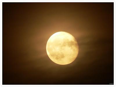 lune_t