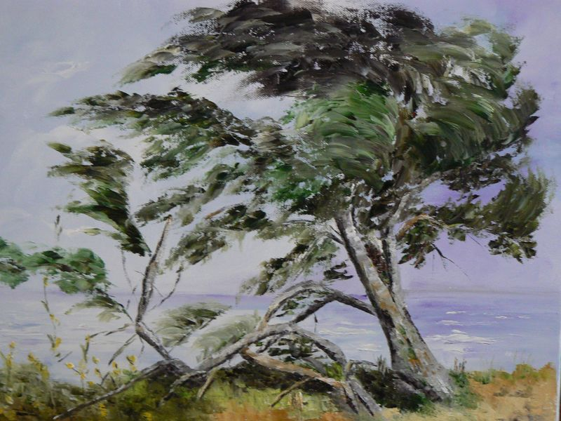 peintures-arbre-dans-le-vent-dans-le-morbihan-g-800x600