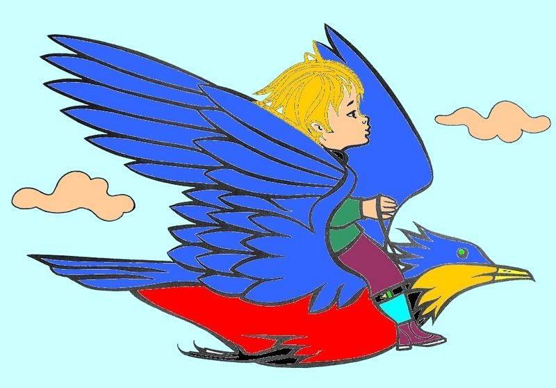 vol-oiseau-800x600-800x600