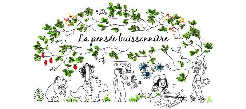 la-pensee-buissonniere_banniere-e-800x600